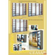 Шкаф-купе 1600х600х2400 Caesar (Цезарь) купить в Одессе, Украине