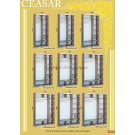 Шкаф-купе 2000х600х2400 Caesar (Цезарь) купить в Одессе, Украине