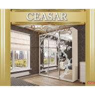 Шкаф-купе 2200х450х2400 Caesar (Цезарь) купить в Одессе, Украине