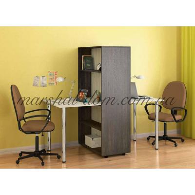 Компьютерный стол СТ-01 Киевский стандарт