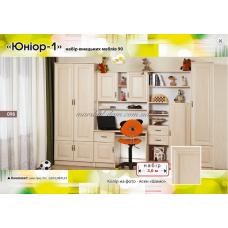 Детская Юниор ясень шимо БМФ (Белоцерковская мебельная фабрика) купить в Одессе, Украине