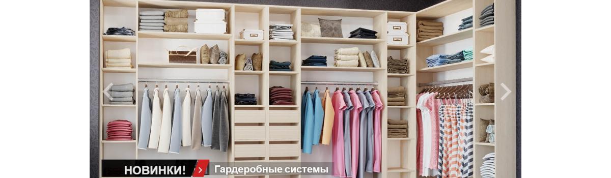 гардеробы и дыери в шкаф