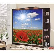 Шкаф-купе Ф-2457 маки Комфорт-мебель (г. Белая Церковь) купить в Одессе, Украине