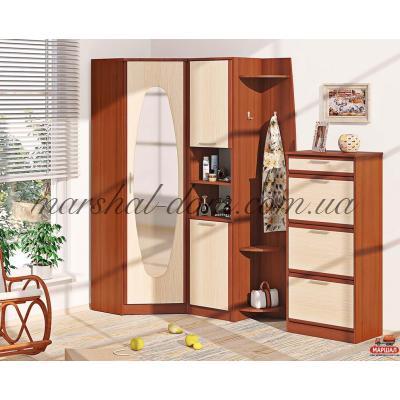 Прихожая ВТ-3928 Комфорт-мебель (г. Белая Церковь) купить в Одессе, Украине
