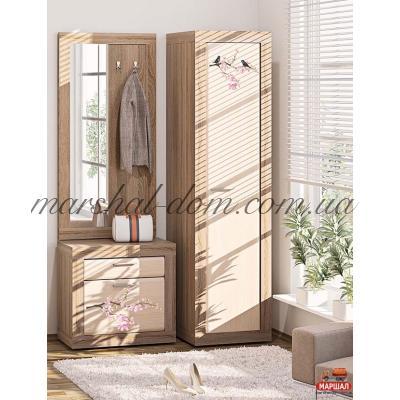 Прихожая ВТ-3941 Комфорт-мебель (г. Белая Церковь) купить в Одессе, Украине