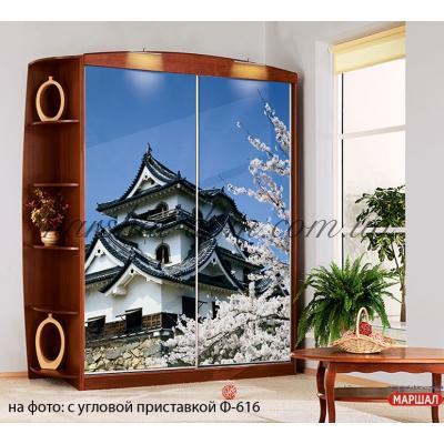 Шкаф - купе Ф2446 Комфорт-мебель (г. Белая Церковь) купить в Одессе, Украине