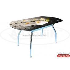 Кристал с фотопечатью Антоник ТМ Стекляные столы купить в Одессе, Украине