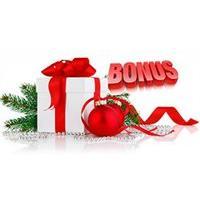 Бонус* от 100 до 500грн